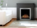 napoleonef30 Electric Fireplace