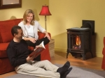 gds20-arlington-direct-vent-gas-stove-jpg